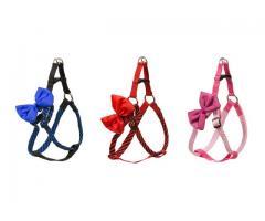 Hundegeschirr mit Schleife kleine Hunde Hundekorbband Halsband